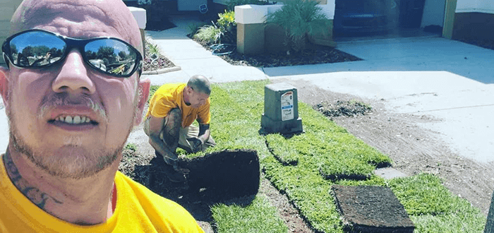 Sod Removal and Replacement