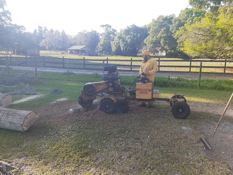 stump grinding service near me